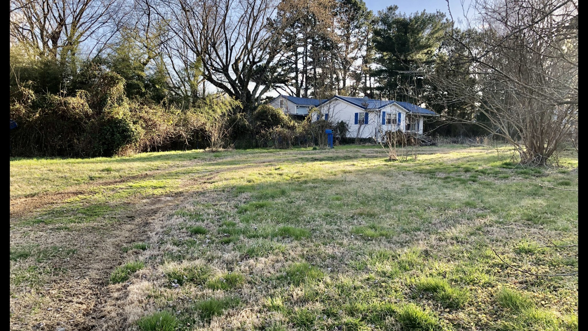 9177 Highway 20 W Property Photo - Summertown, TN real estate listing