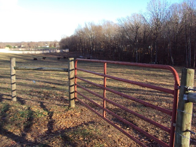 536 Sparrow Rd Property Photo - Lafayette, TN real estate listing