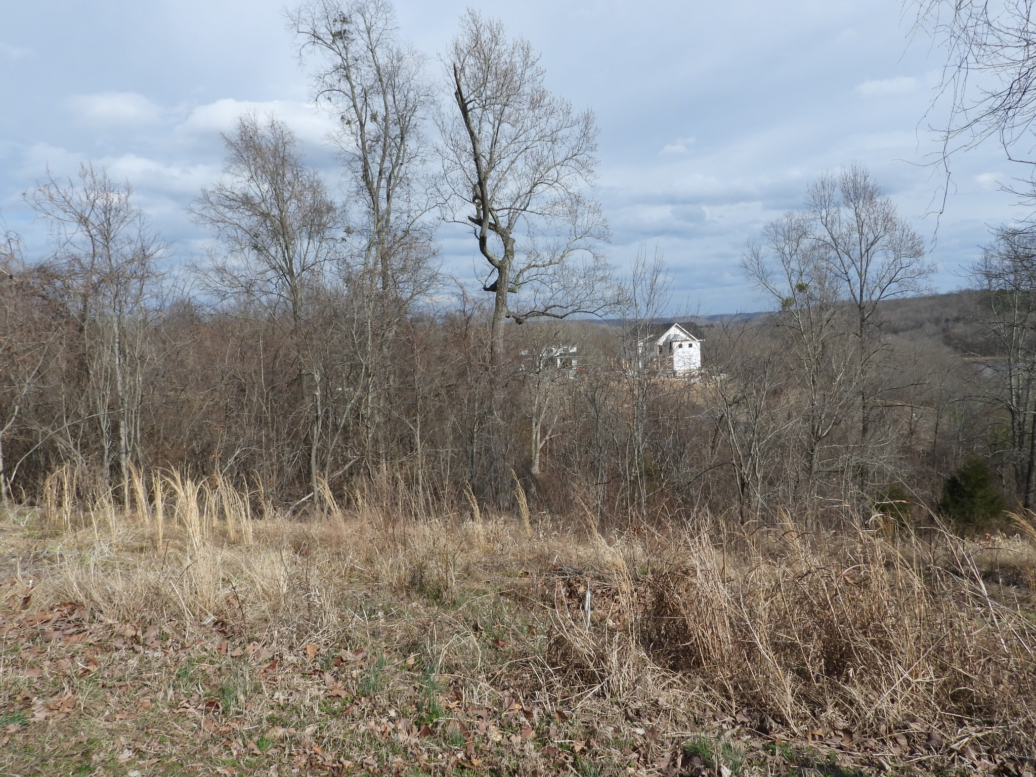 36 River Trace Property Photo - Dover, TN real estate listing