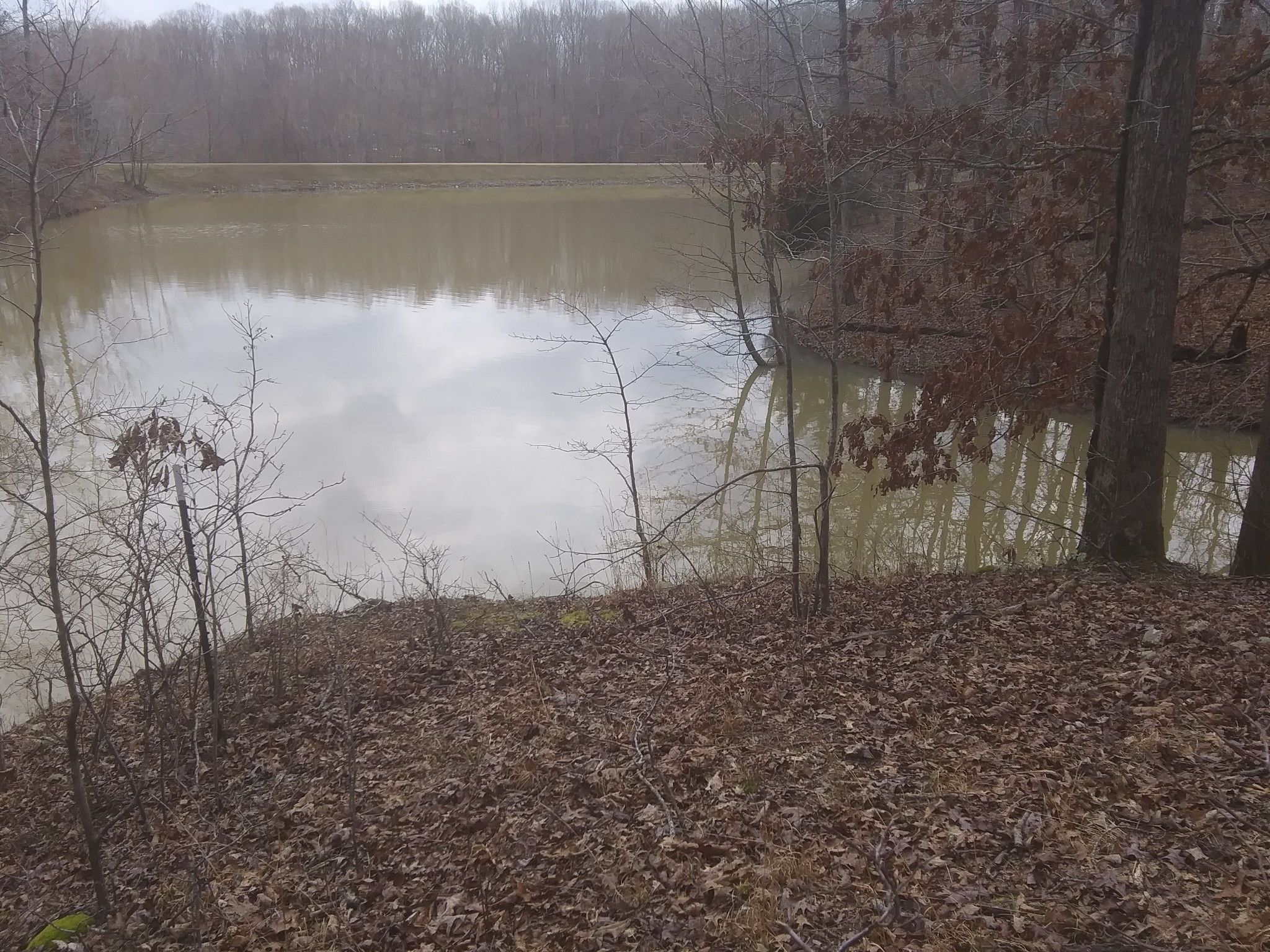 0 Beaver Bend Dr. Property Photo - Nunnelly, TN real estate listing
