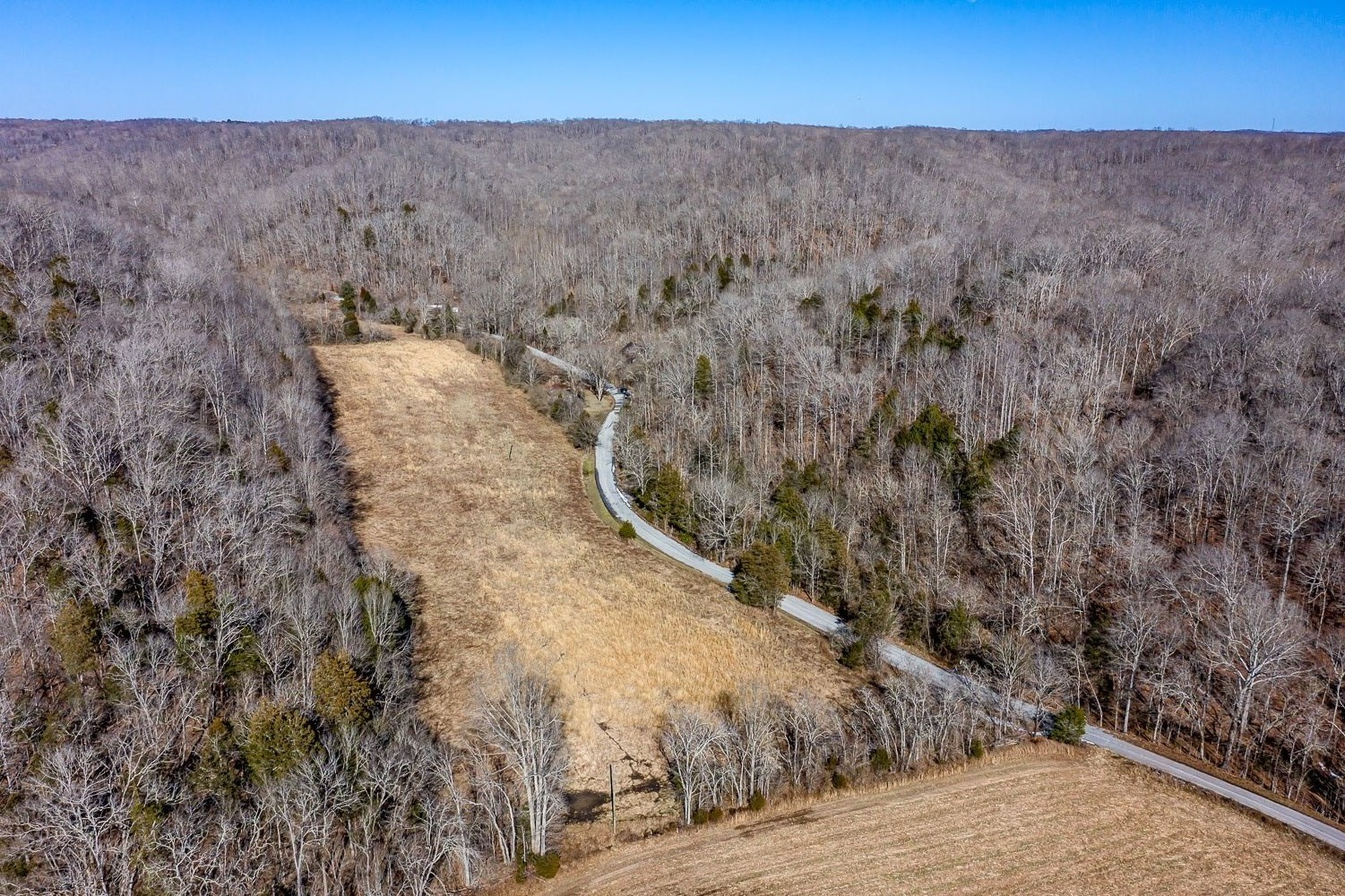 5950 Fox Branch Rd Property Photo - Columbia, TN real estate listing