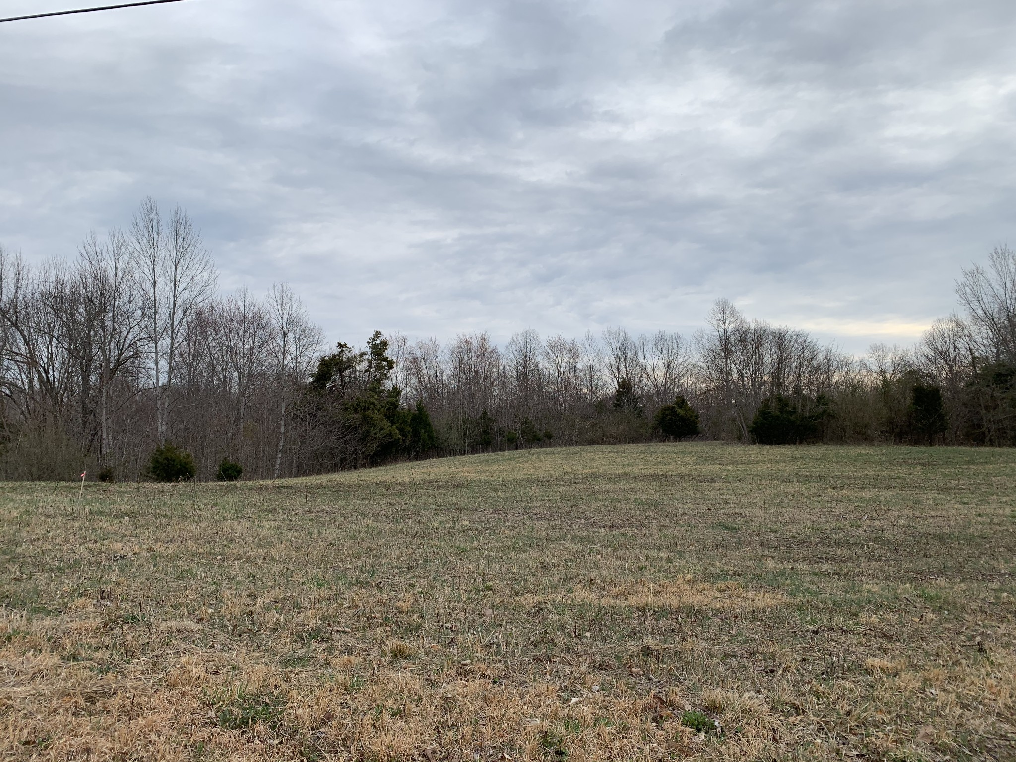 0 Hopkins Brown Ln Property Photo - Gainesboro, TN real estate listing