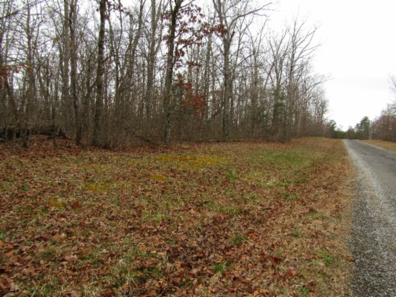 12 Halfway Rd Property Photo - Monterey, TN real estate listing