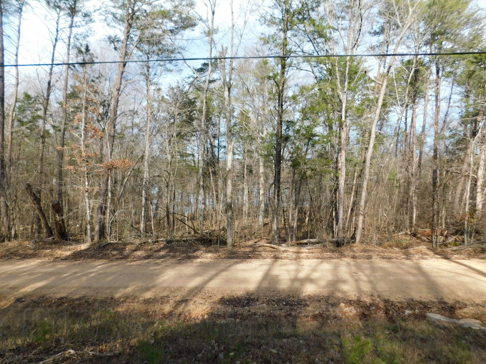 0 Lake Dr Property Photo - Clifton, TN real estate listing