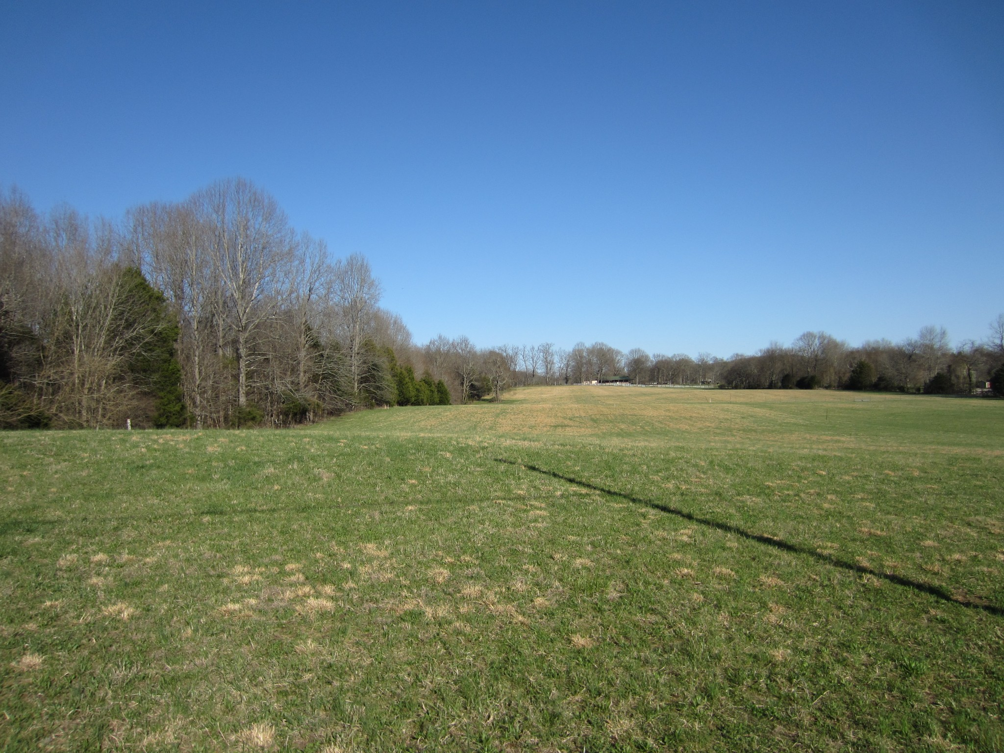 0 Hwy 231 S Property Photo - Castalian Springs, TN real estate listing