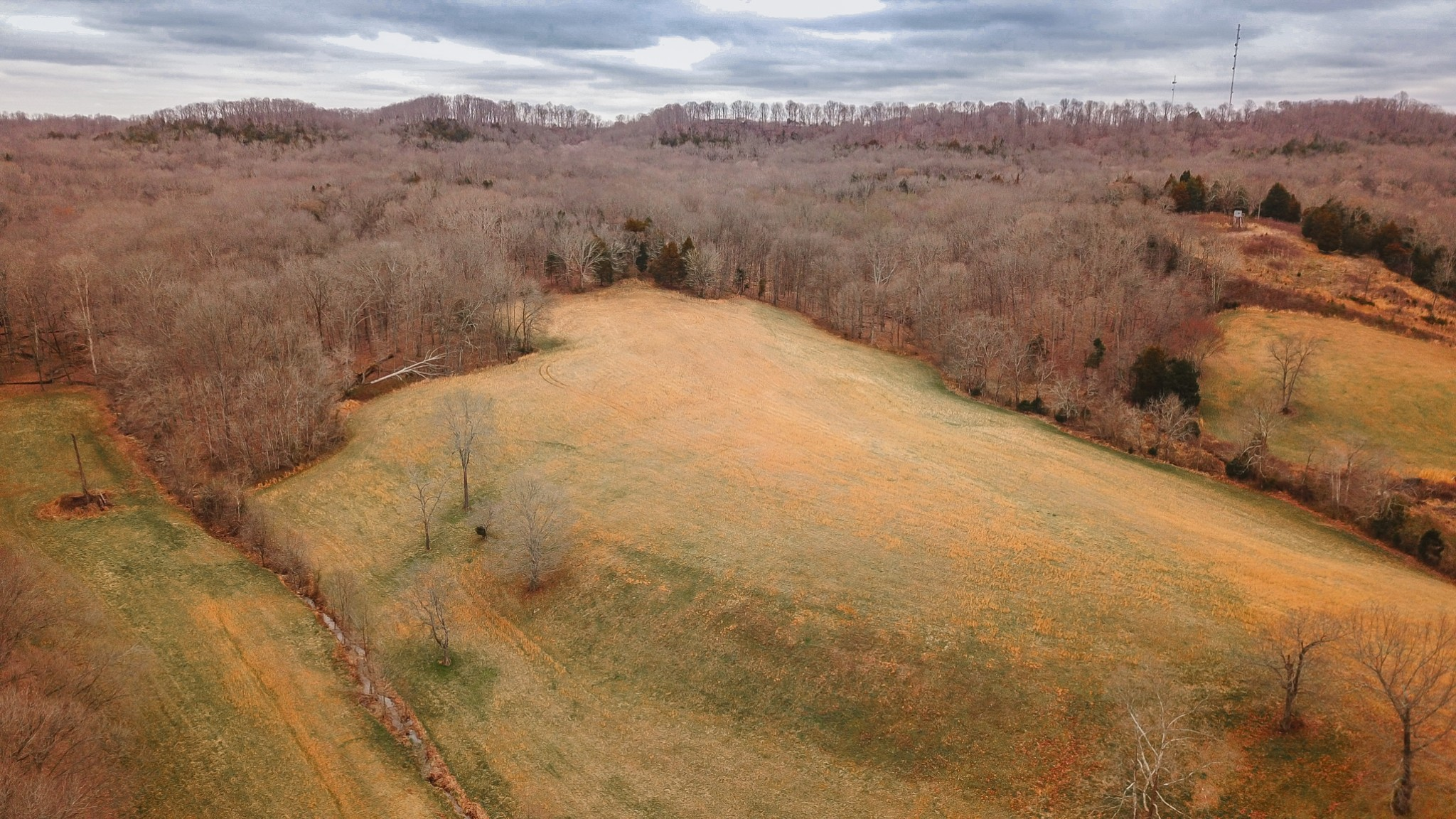 525B County House Rd Property Photo - Cottontown, TN real estate listing