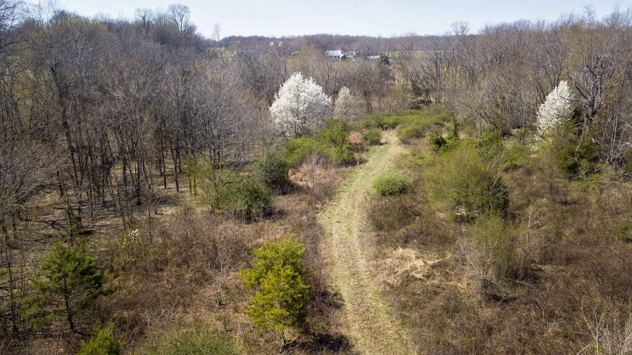 0 Poplar Ridge Lane Property Photo - Chapmansboro, TN real estate listing