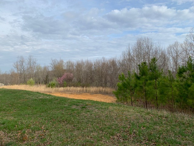 212 Briary Rd Property Photo - Hohenwald, TN real estate listing