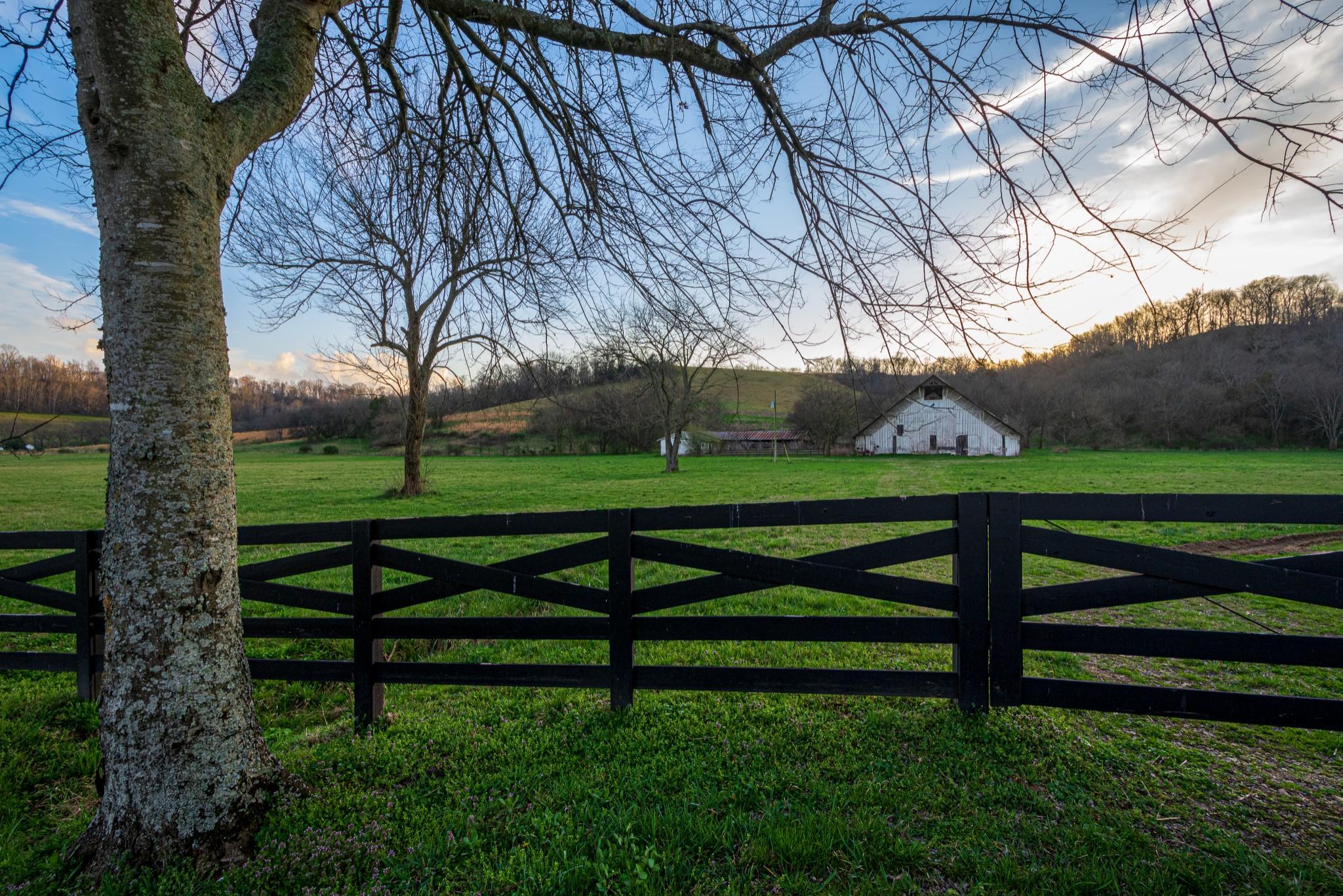 0 Big Dry Creek Rd Property Photo - Pulaski, TN real estate listing