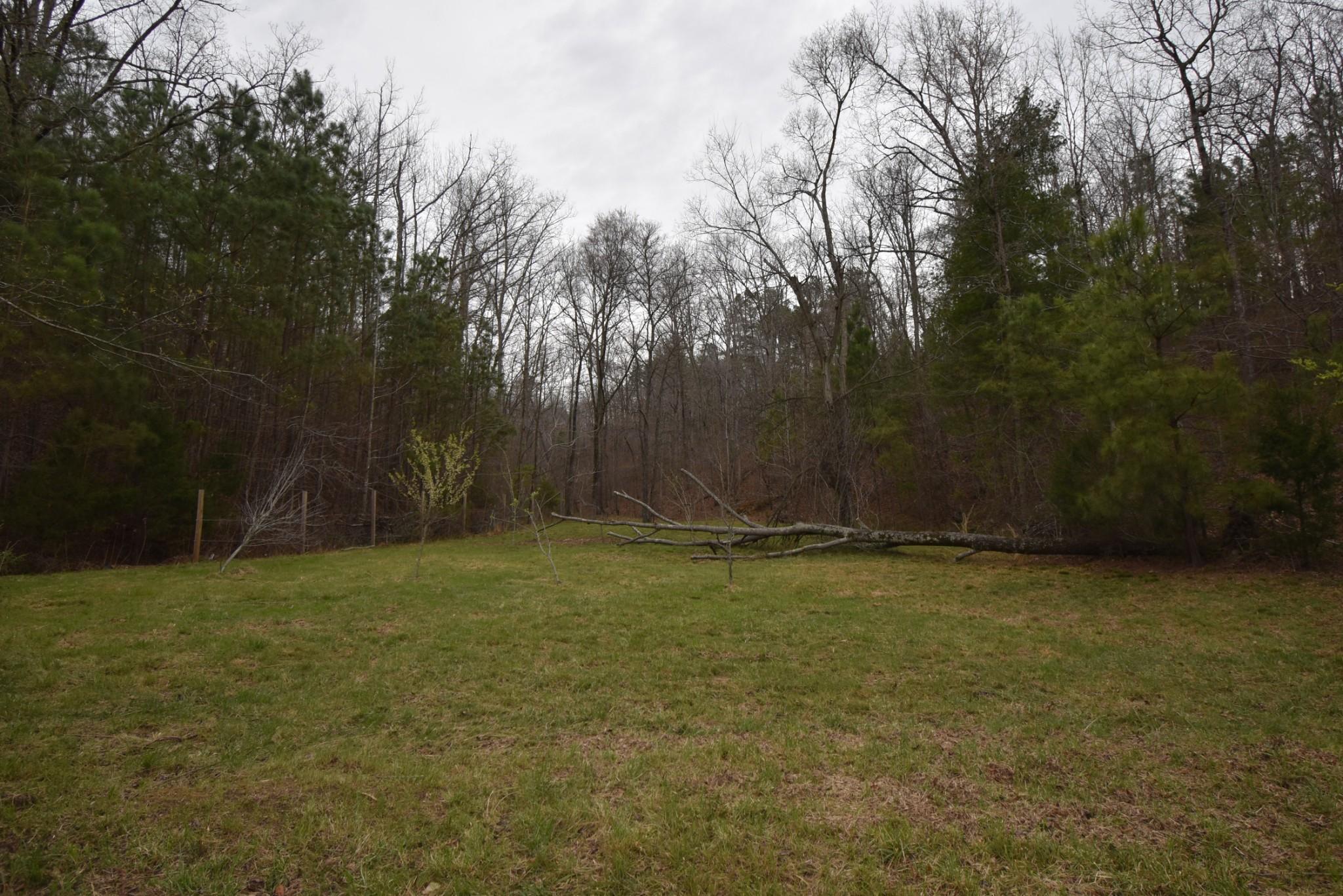 0 Roan Crk Rd W Property Photo - Lobelville, TN real estate listing