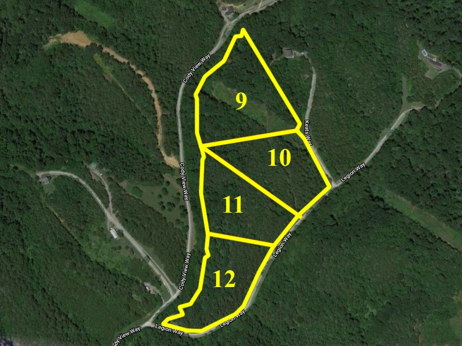 0 Legion Way Property Photo - Sevierville, TN real estate listing