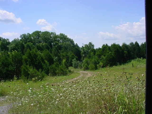 0 Holly Grove Rd Property Photo - Lascassas, TN real estate listing