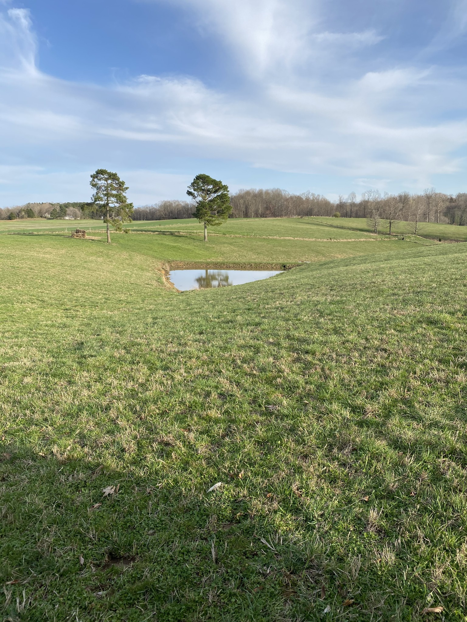 1155 Willette Rd S Property Photo - Red Boiling Springs, TN real estate listing