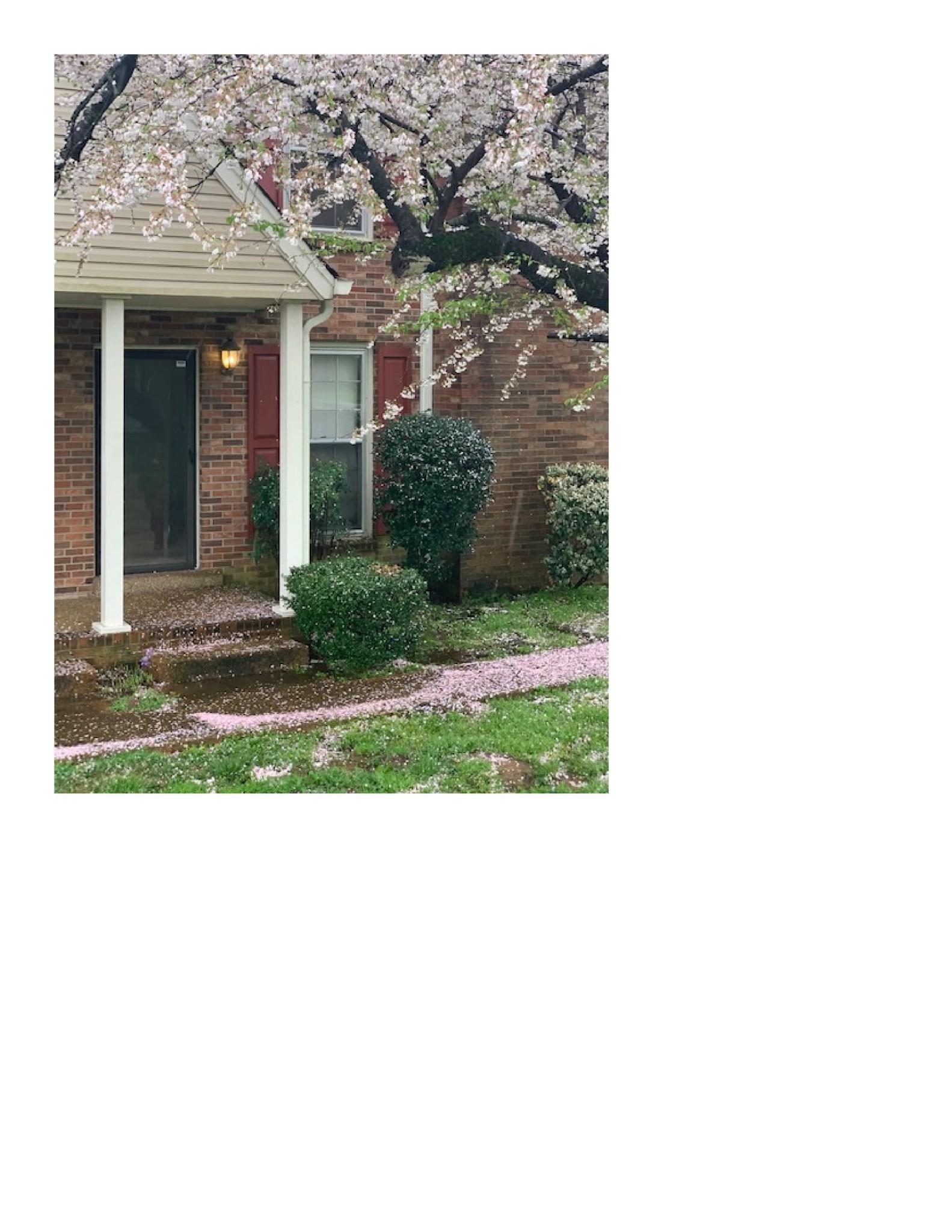 352 Stewarts Ferry Pike Property Photo - Nashville, TN real estate listing
