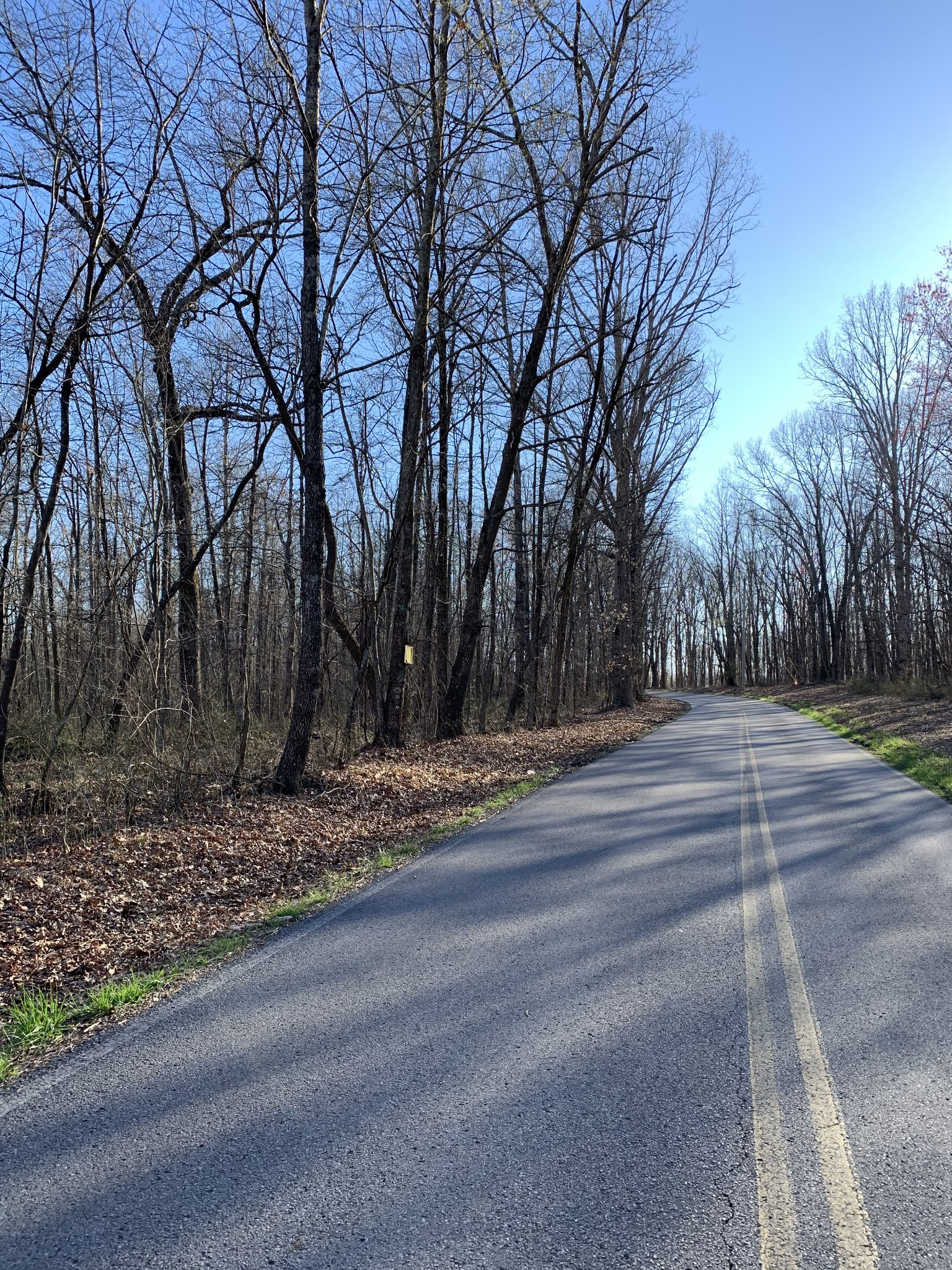 0 Snake Pond Rd Property Photo - Sewanee, TN real estate listing