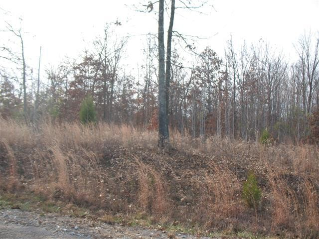 0 Shores Trail Property Photo - Stewart, TN real estate listing