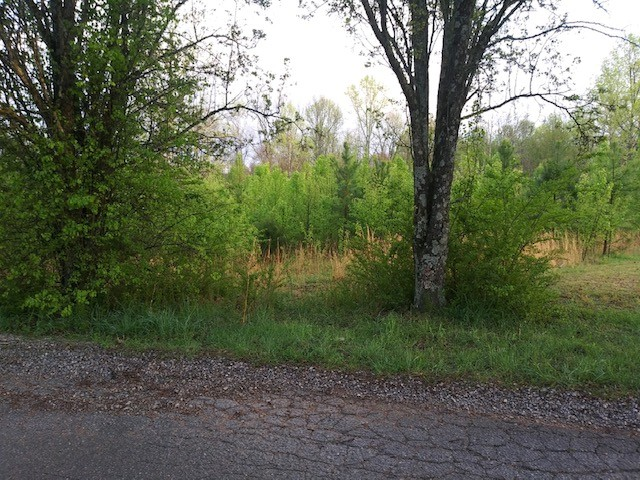 0 Shannon Rd Property Photo - Leoma, TN real estate listing