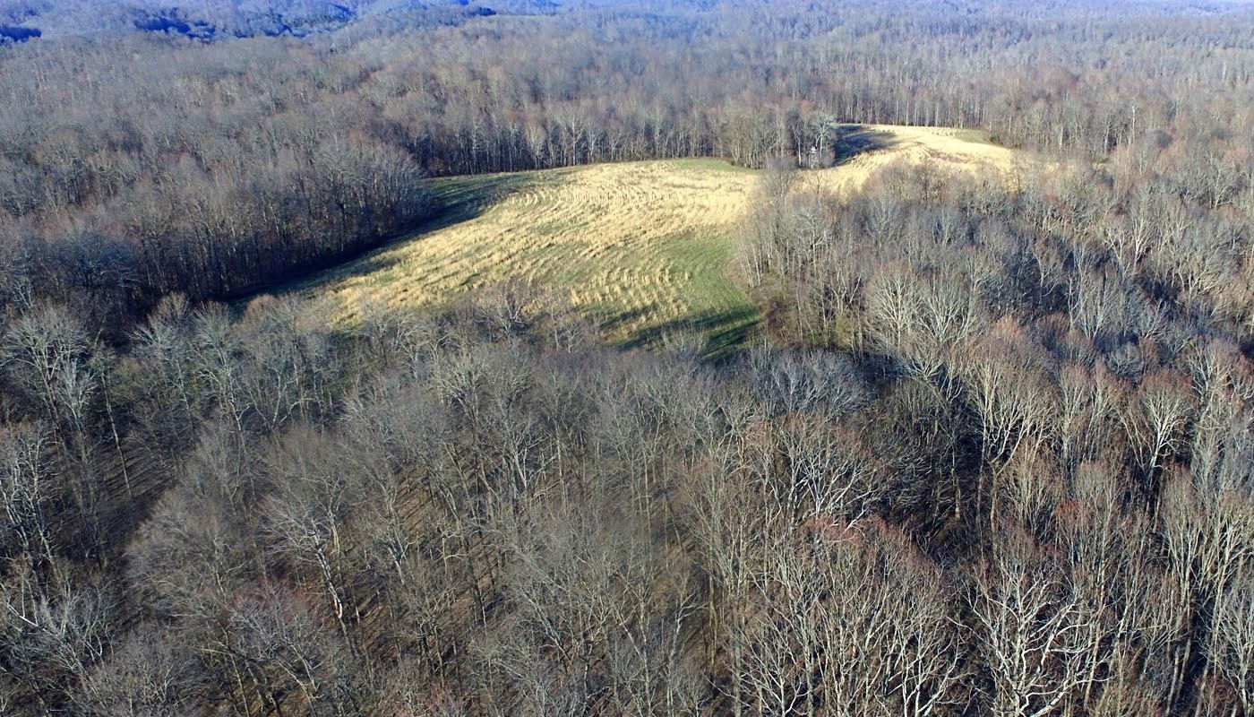 0 Panhandle Road Property Photo - Wartrace, TN real estate listing