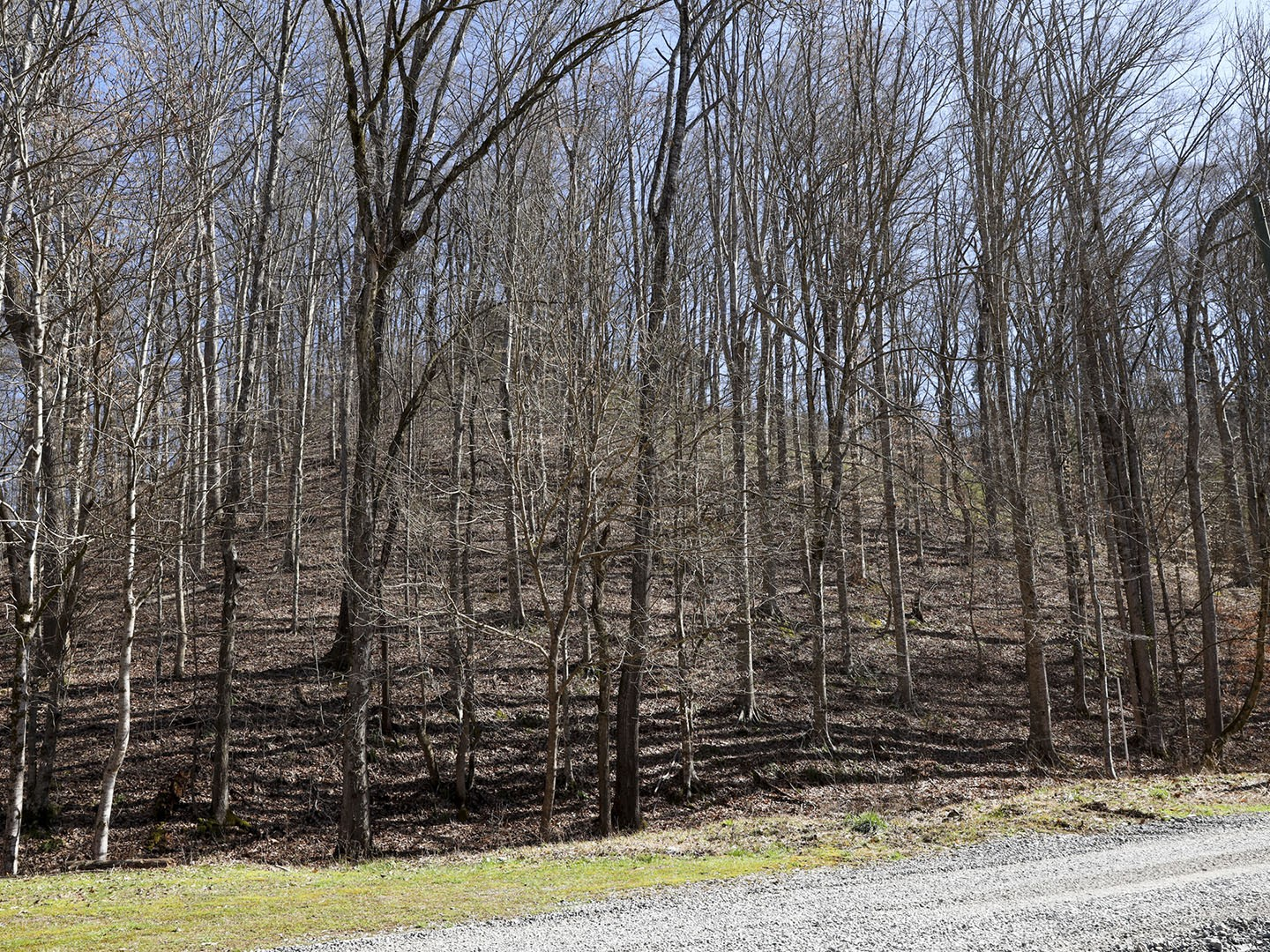 18 Cody View Way Property Photo - Sevierville, TN real estate listing