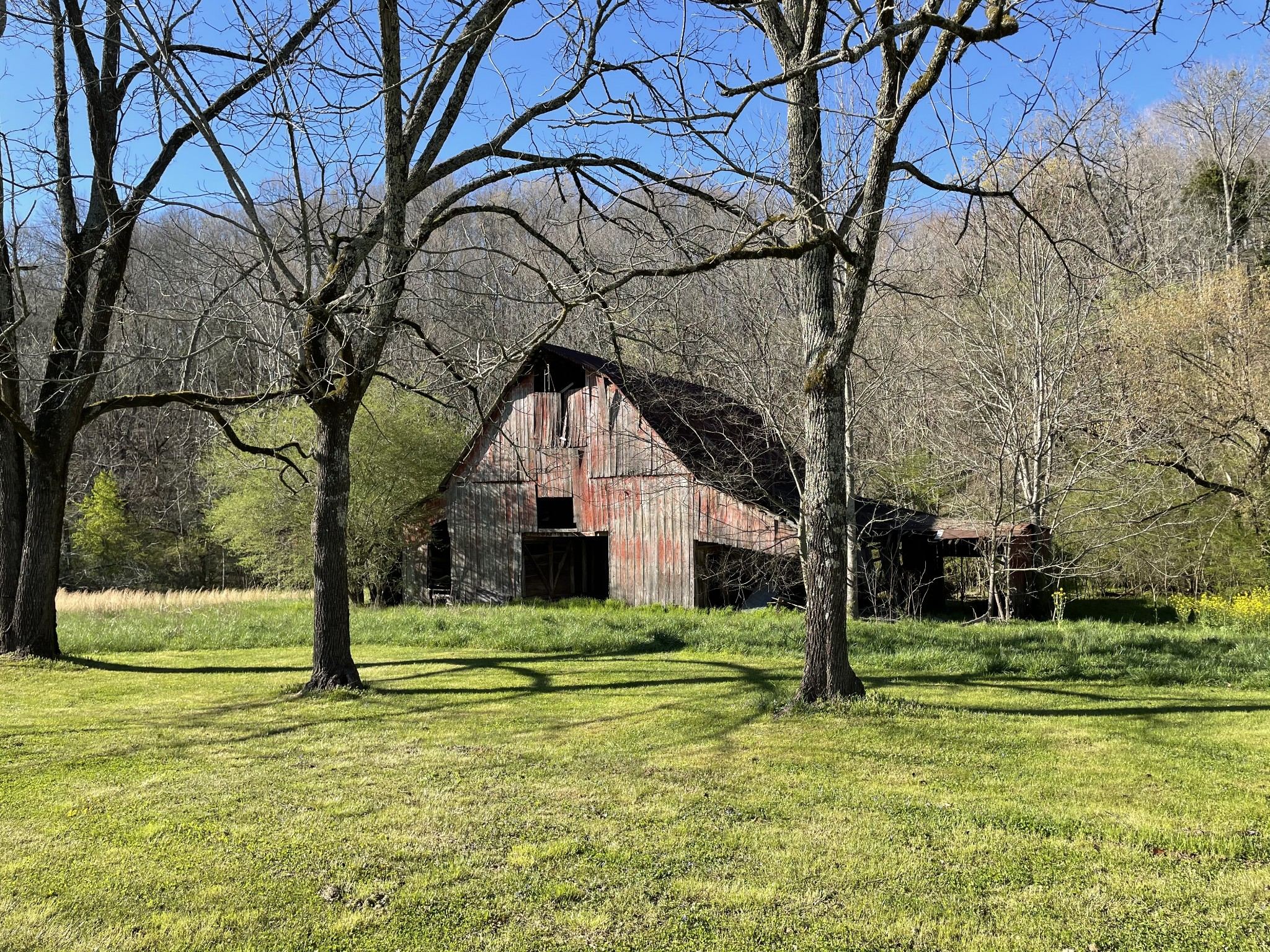 1947 Cobb Hollow Rd Property Photo - Lynchburg, TN real estate listing