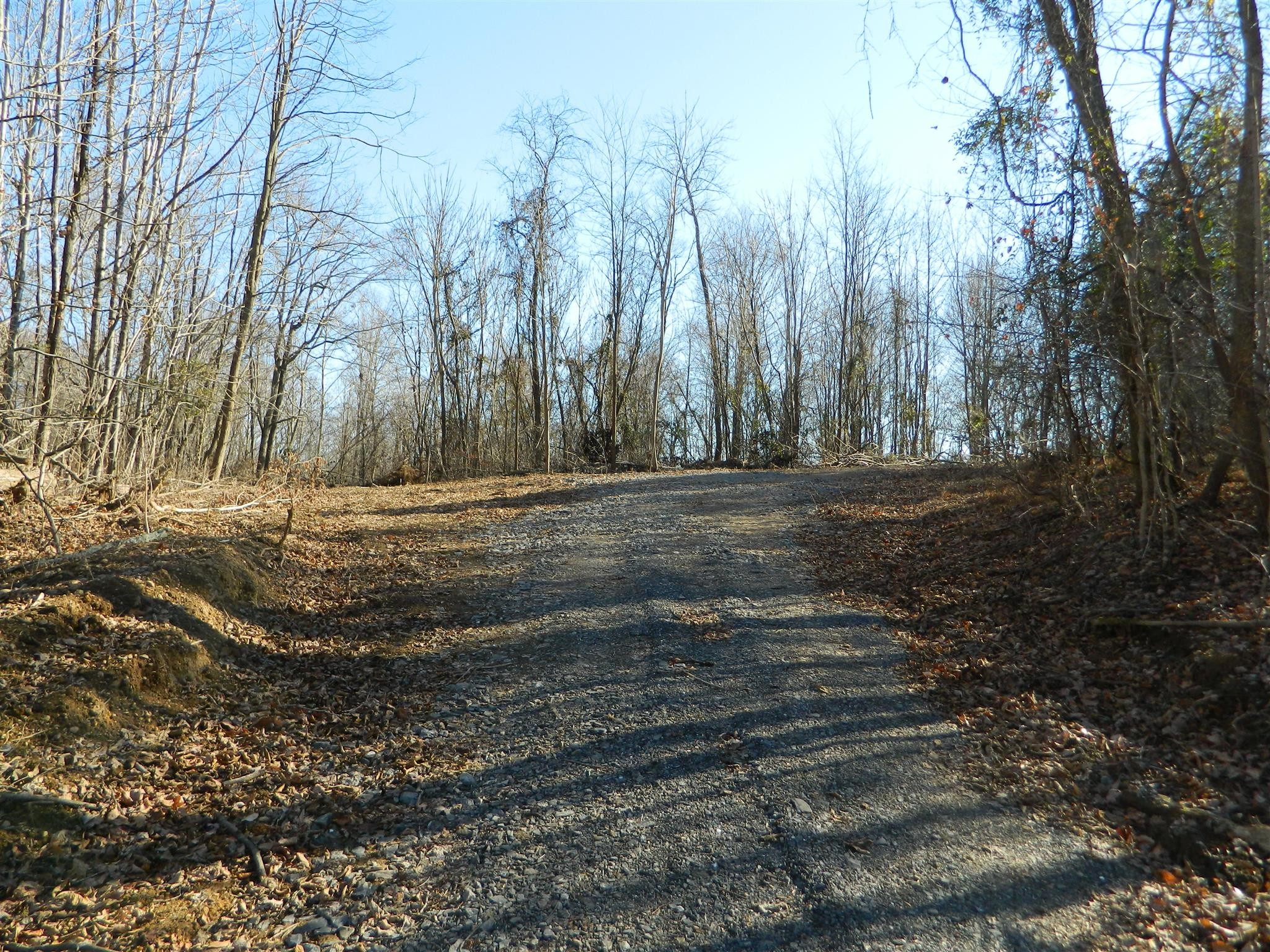 0 Garrison Br Rd Property Photo - Cottontown, TN real estate listing