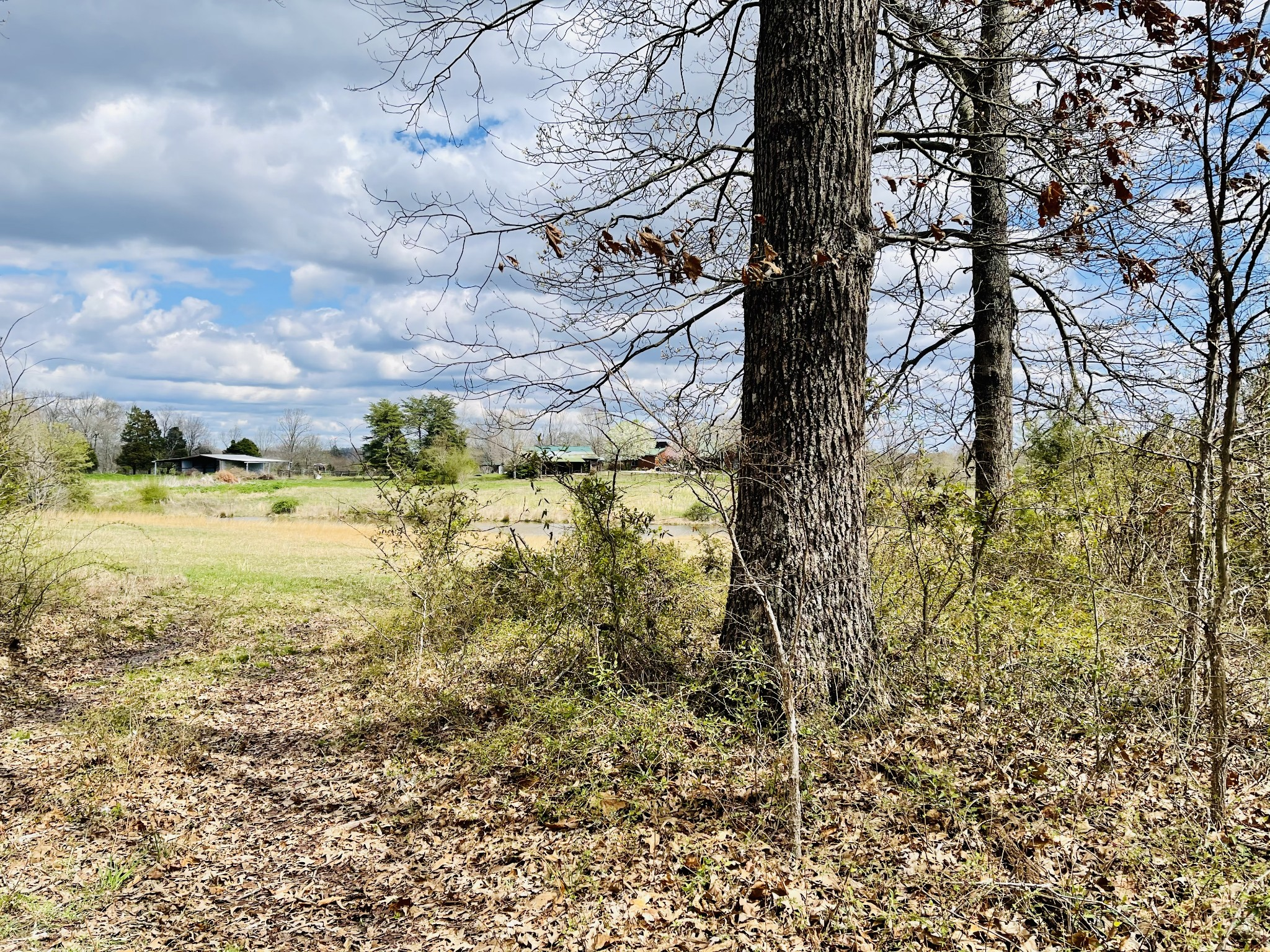 0 Wingfield Church Rd. Property Photo - Bowling Green, KY real estate listing