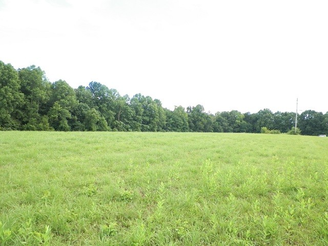 0 Whitaker Cir Property Photo - Red Boiling Springs, TN real estate listing