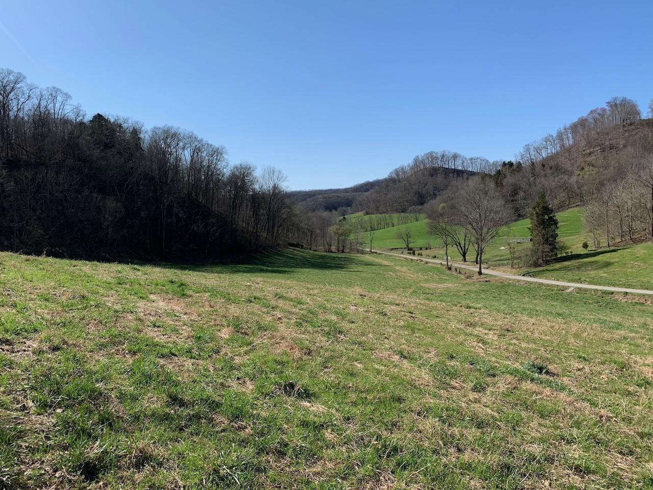 1022 Massey Hollow Ln Property Photo - Dixon Springs, TN real estate listing
