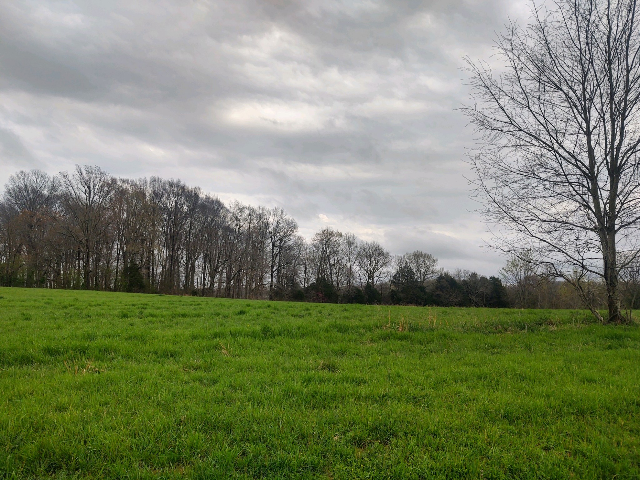 1 Scottsville Rd Property Photo