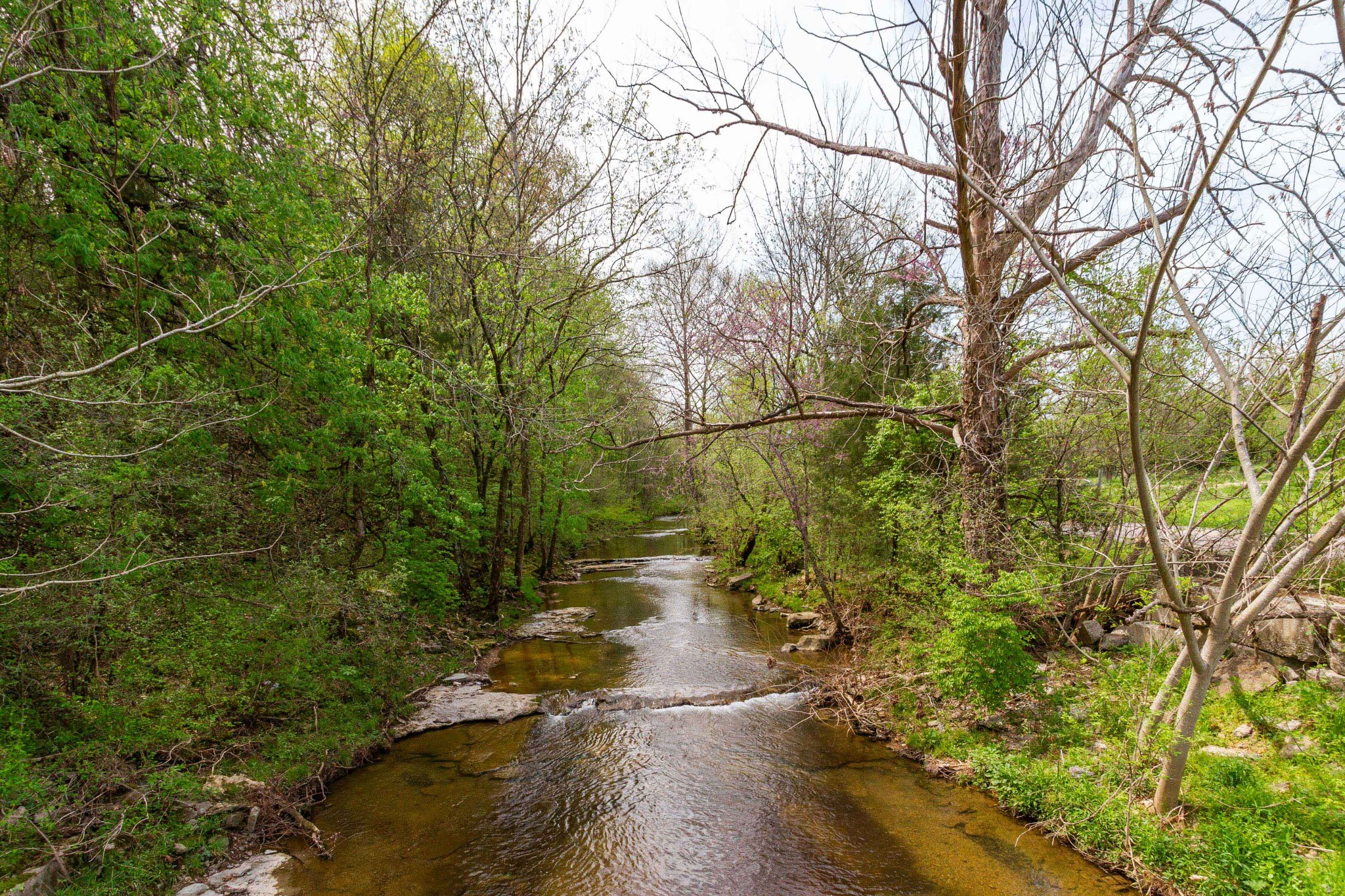 440c Dry Fork Creek Rd Property Photo 1