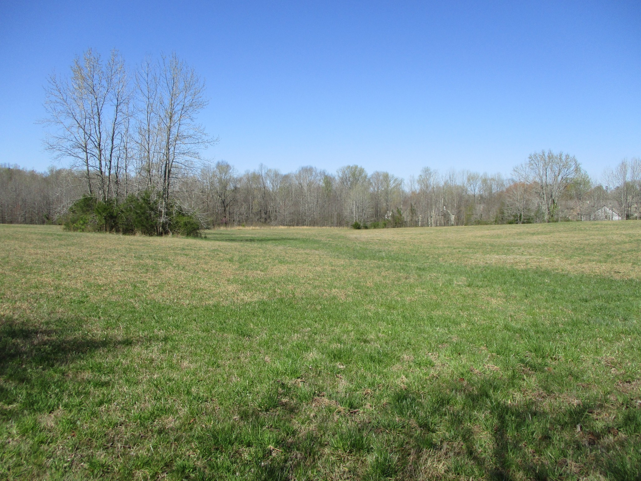 7309 Crow Cut Rd Property Photo - Fairview, TN real estate listing
