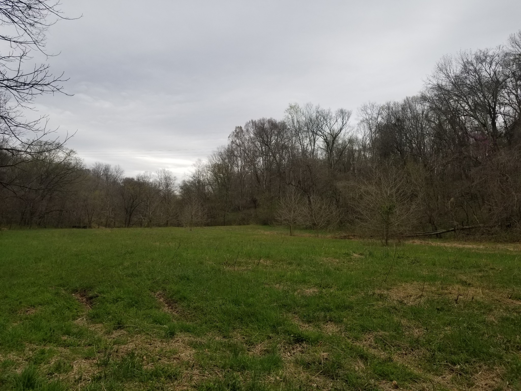 0 Highway 13 S Property Photo - Cumberland Furnace, TN real estate listing