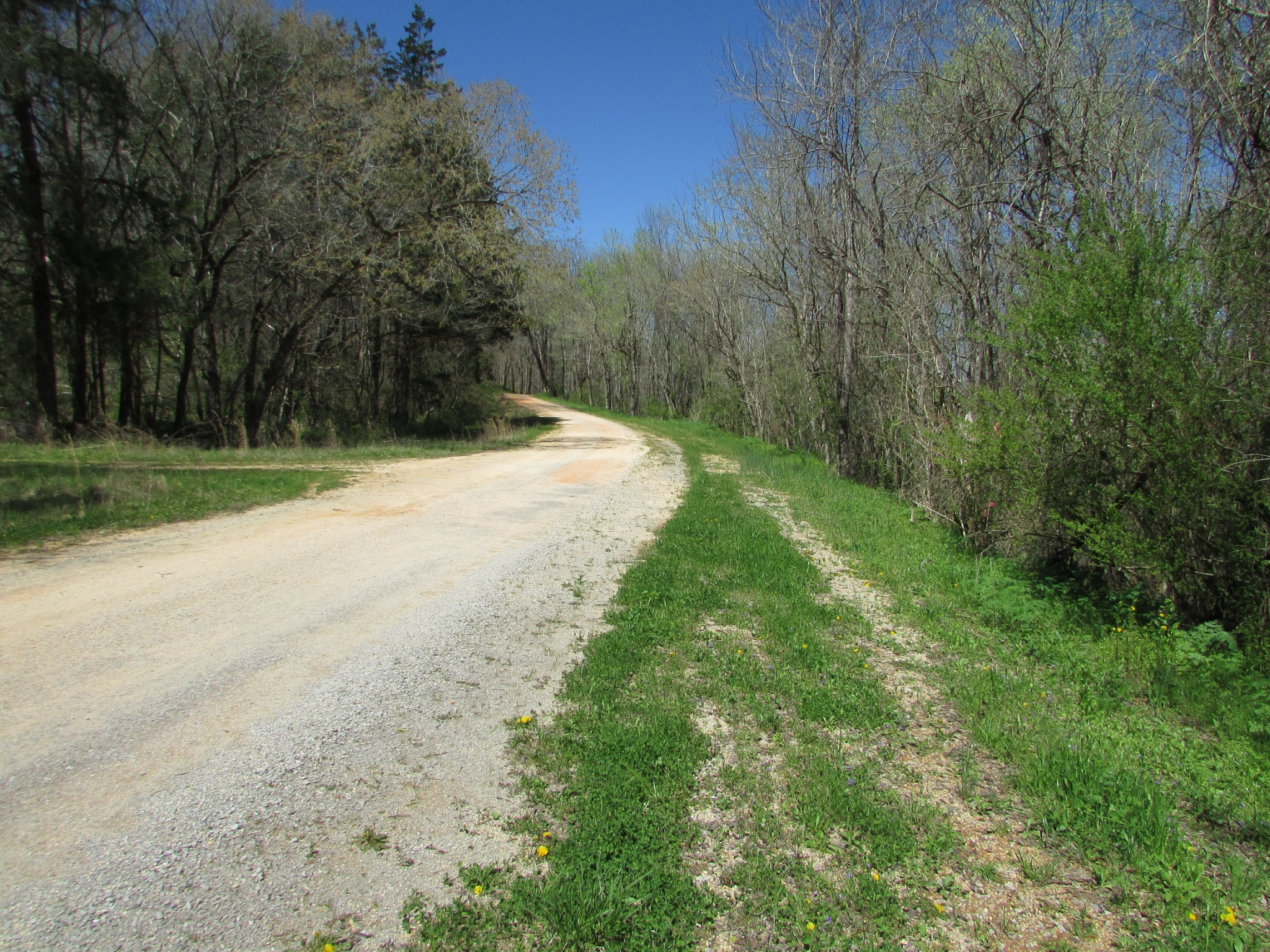 0 Mayberry Rd Property Photo - Williamsport, TN real estate listing