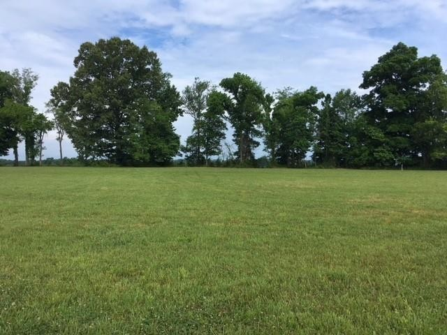 0 Col James Hardin Dr Property Photo - Clifton, TN real estate listing