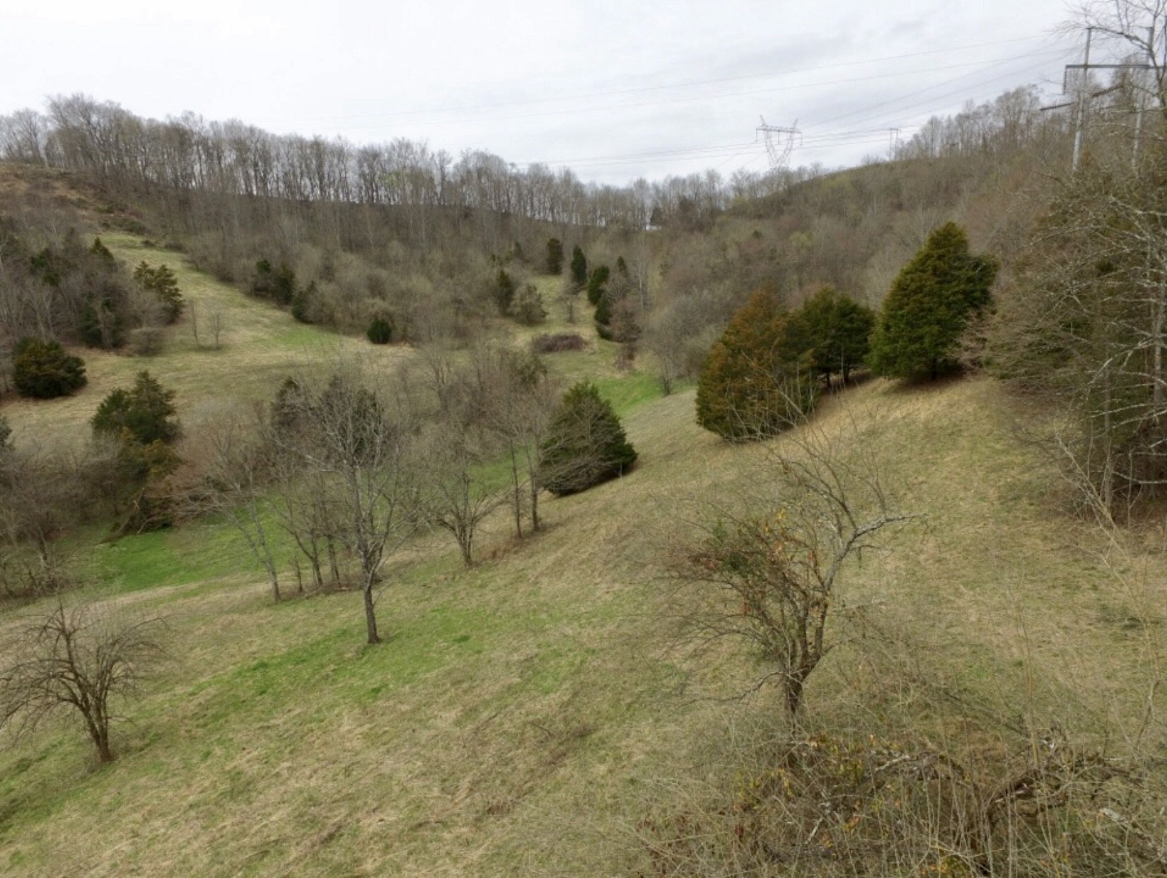 10 Temperance Cir Property Photo - Hickman, TN real estate listing