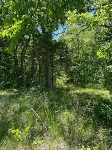 0 S Windrow Rd Property Photo - Rockvale, TN real estate listing