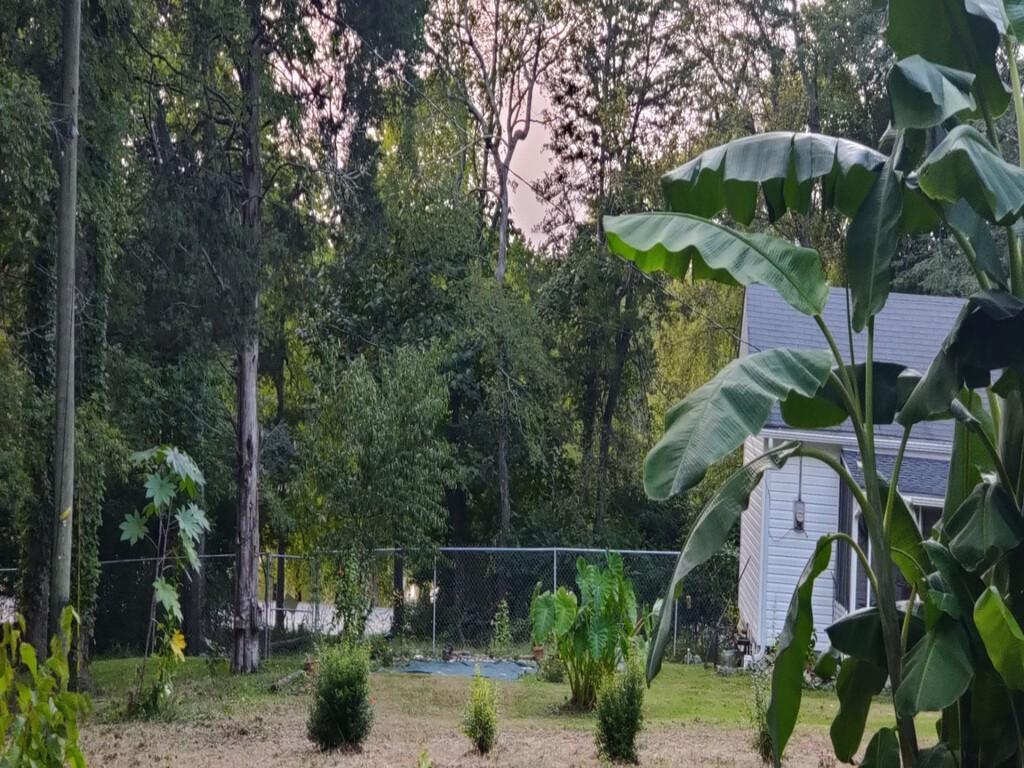 111 Sanitarium Dr Property Photo - Madison, TN real estate listing
