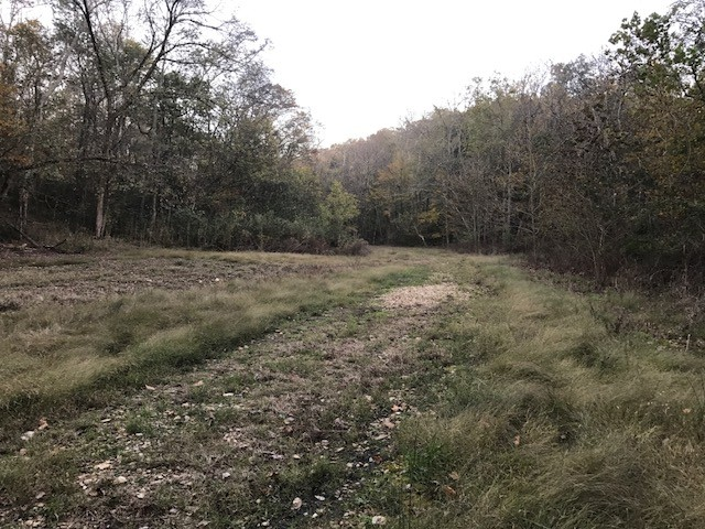 0 Wolf Hill Road Property Photo - Bethpage, TN real estate listing
