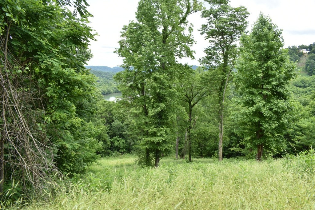 0 Cumberland Valley Dr Property Photo - Gainesboro, TN real estate listing