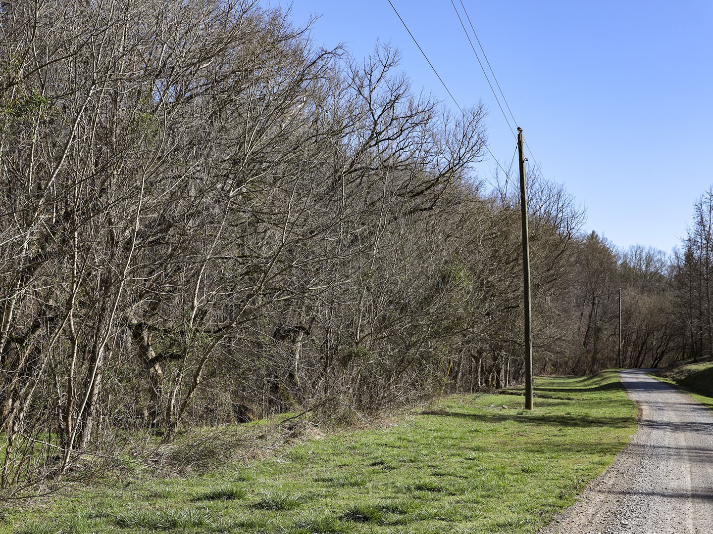 0 Cody View Way Property Photo - Sevierville, TN real estate listing