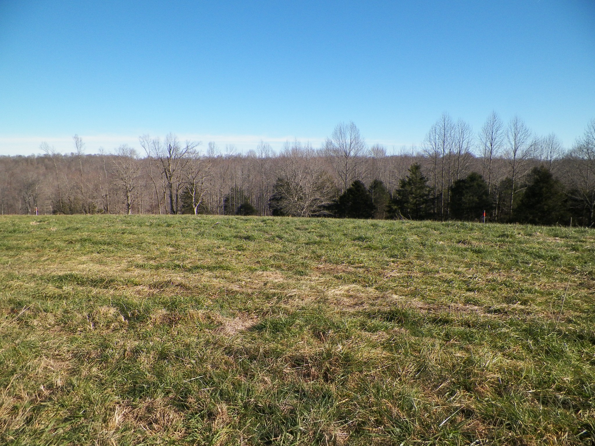 6 Oak Grove Rd Property Photo - Red Boiling Springs, TN real estate listing