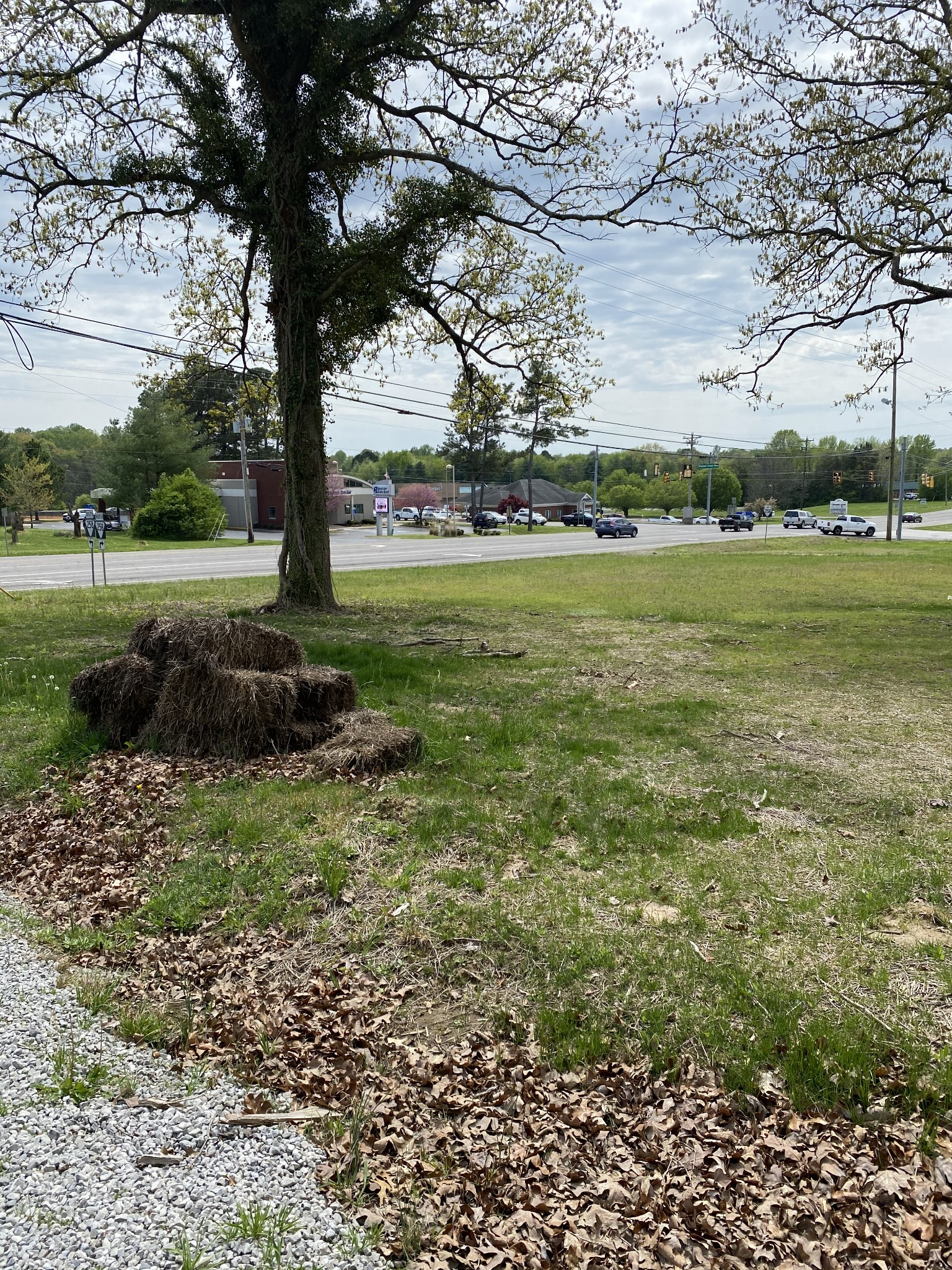 2929 Highway 31 W Property Photo - White House, TN real estate listing