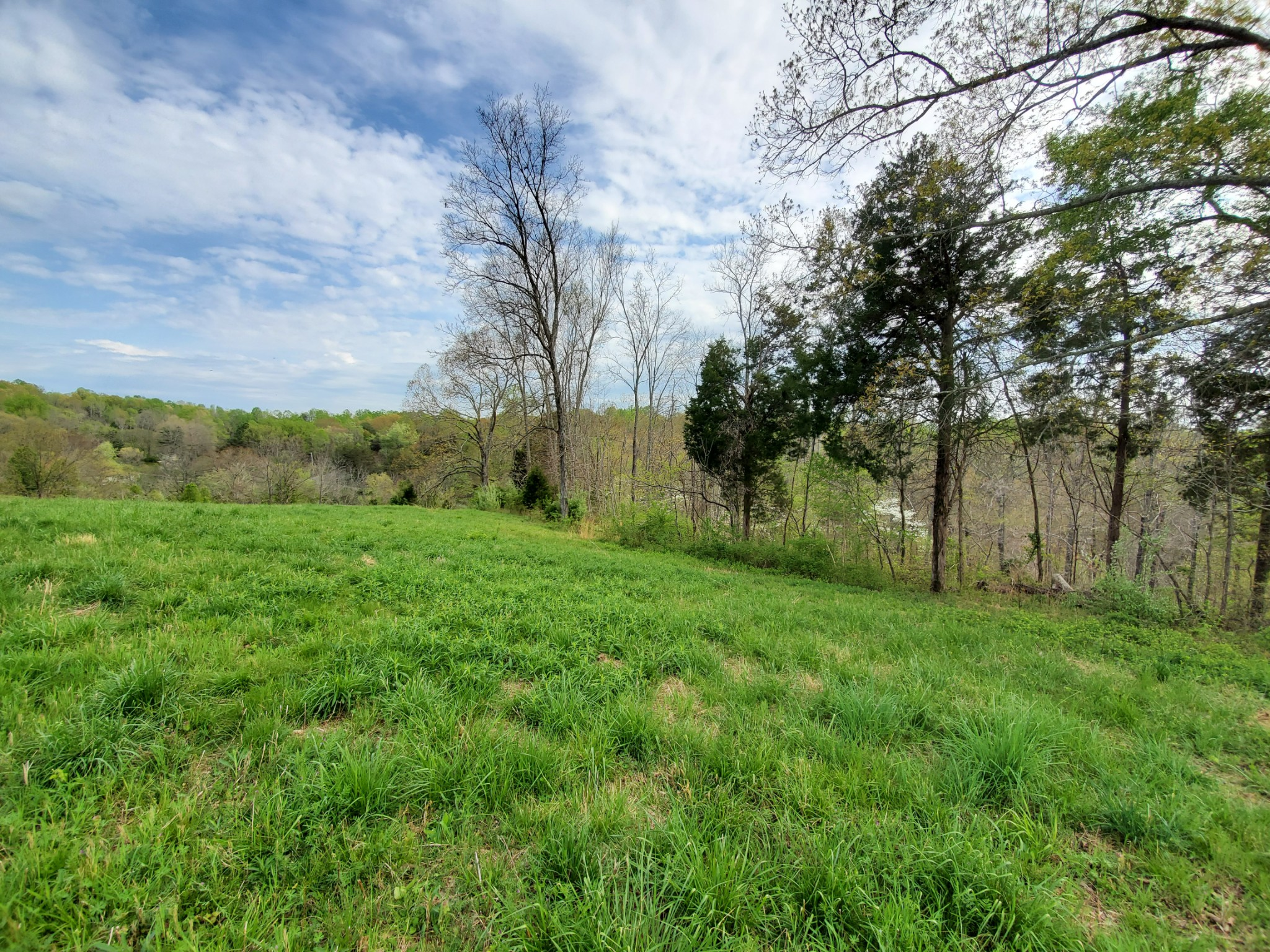 1794 Buck Hollow Rd Property Photo - Chapmansboro, TN real estate listing
