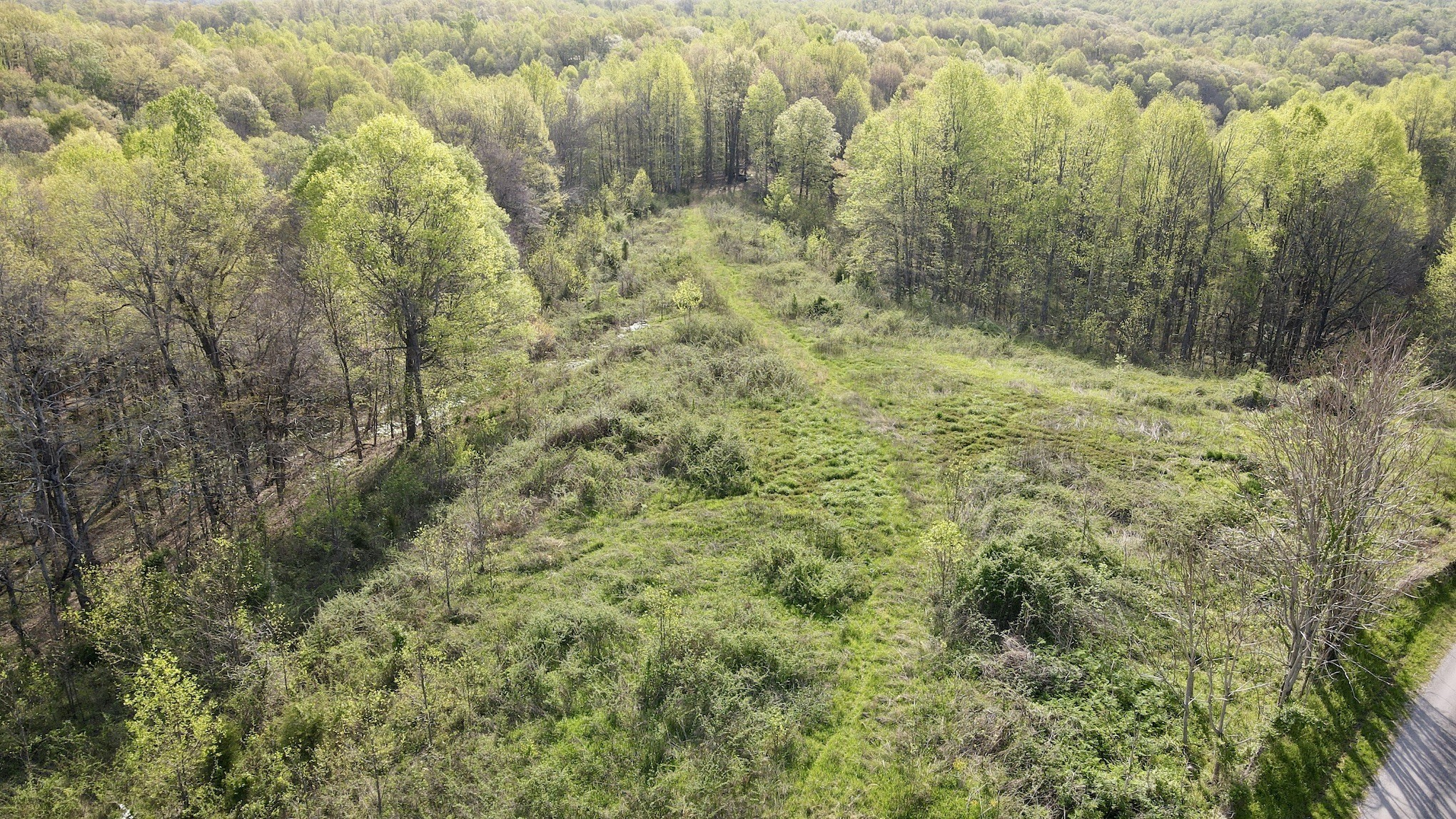 0 Womack Hollow Property Photo - Liberty, TN real estate listing