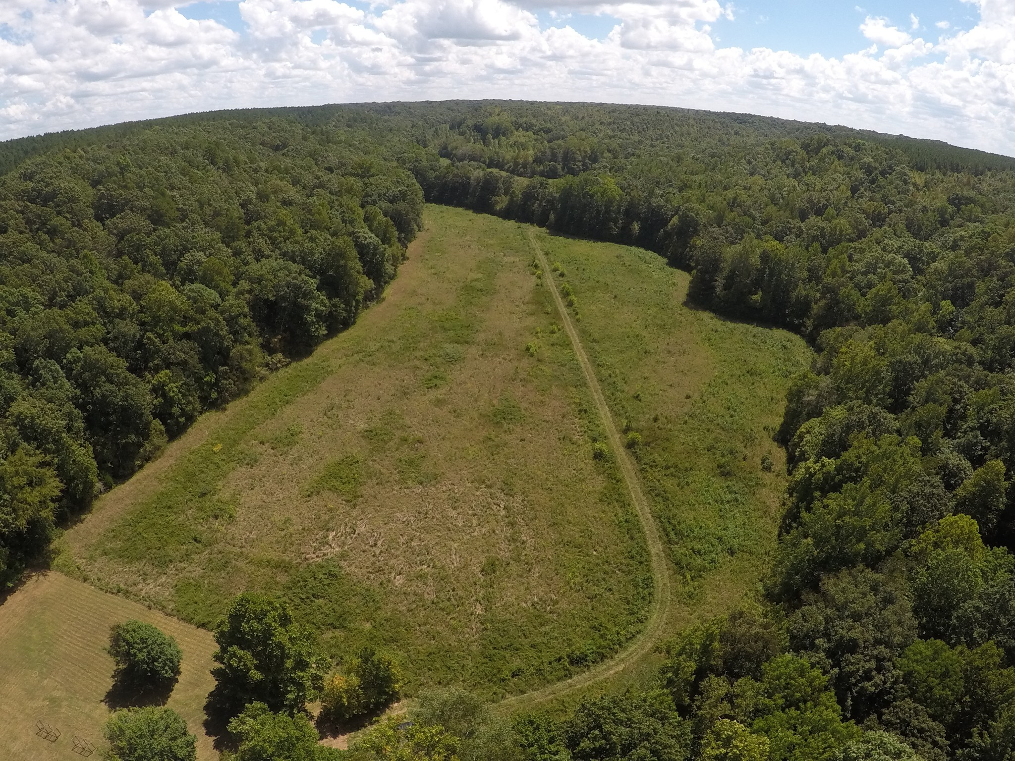 0 McCord Hollow Rd Property Photo - Hohenwald, TN real estate listing