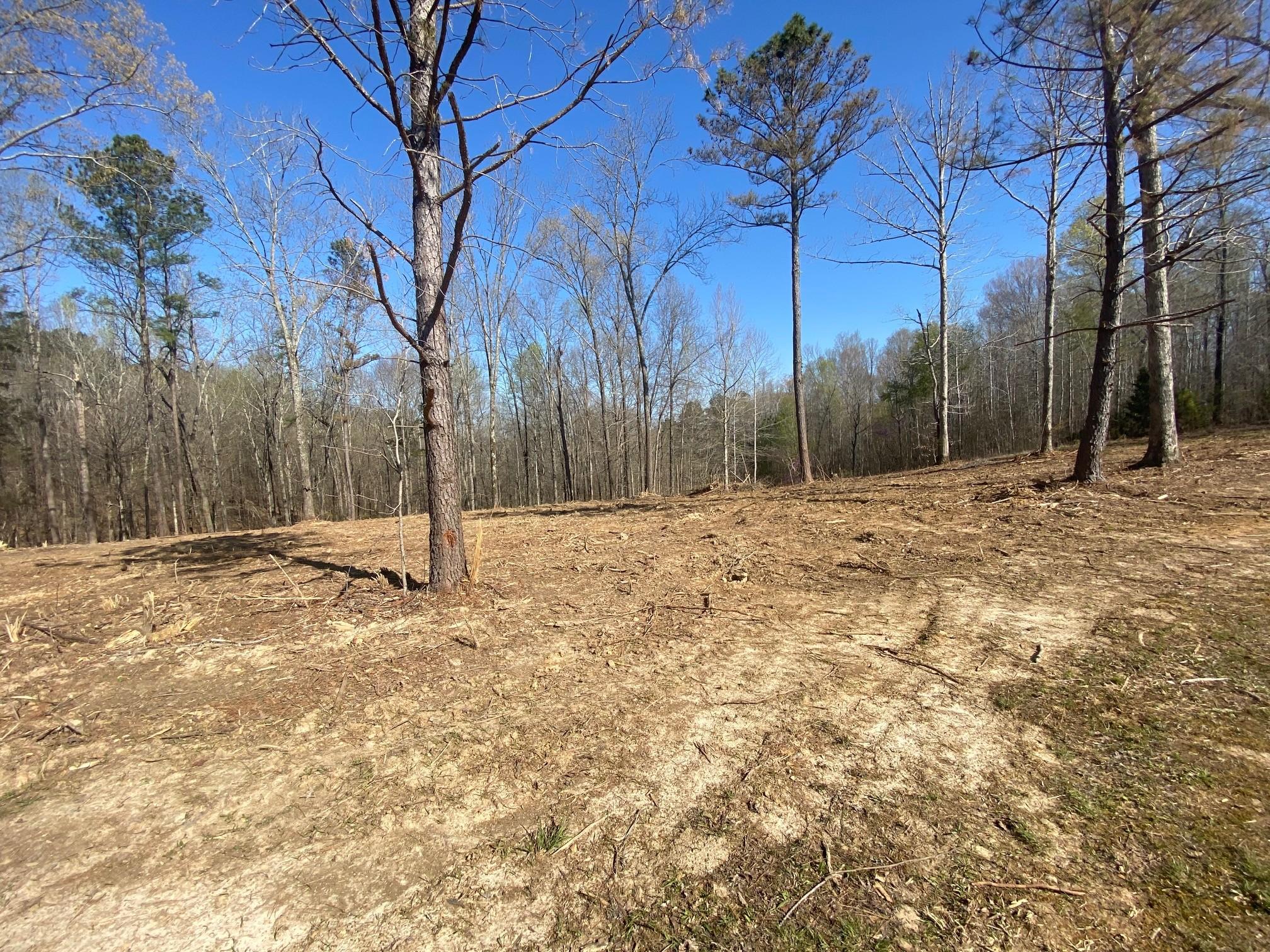 116 Deer Trl Property Photo - Cumberland City, TN real estate listing