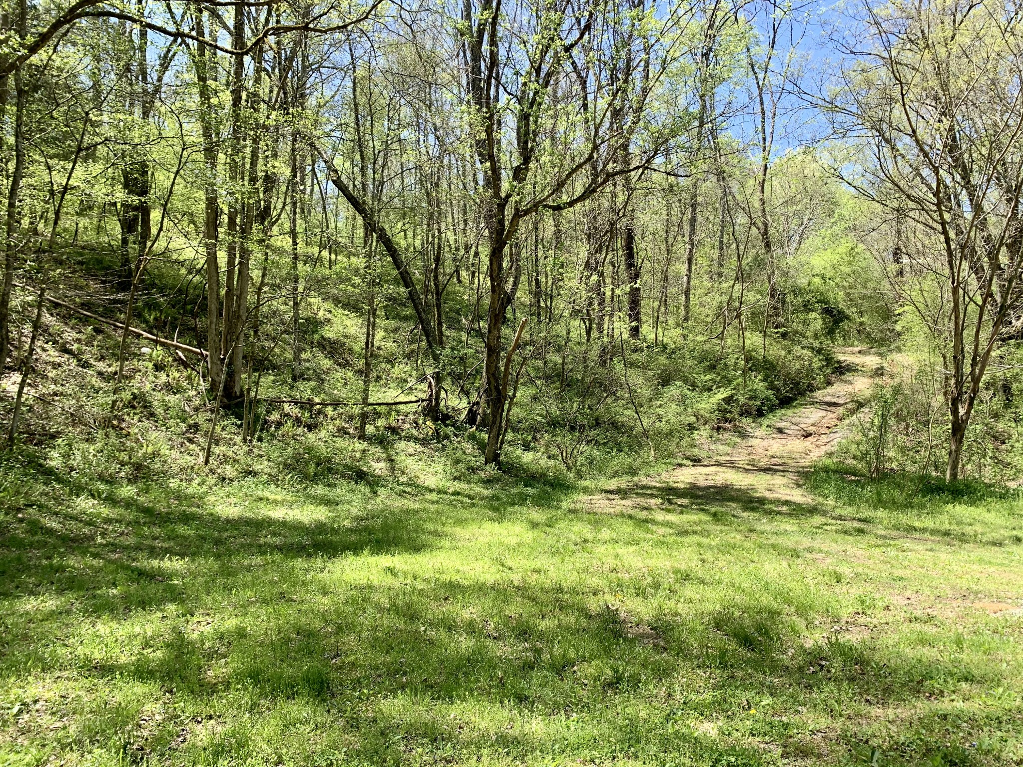 2212 Washer Hollow Rd Property Photo