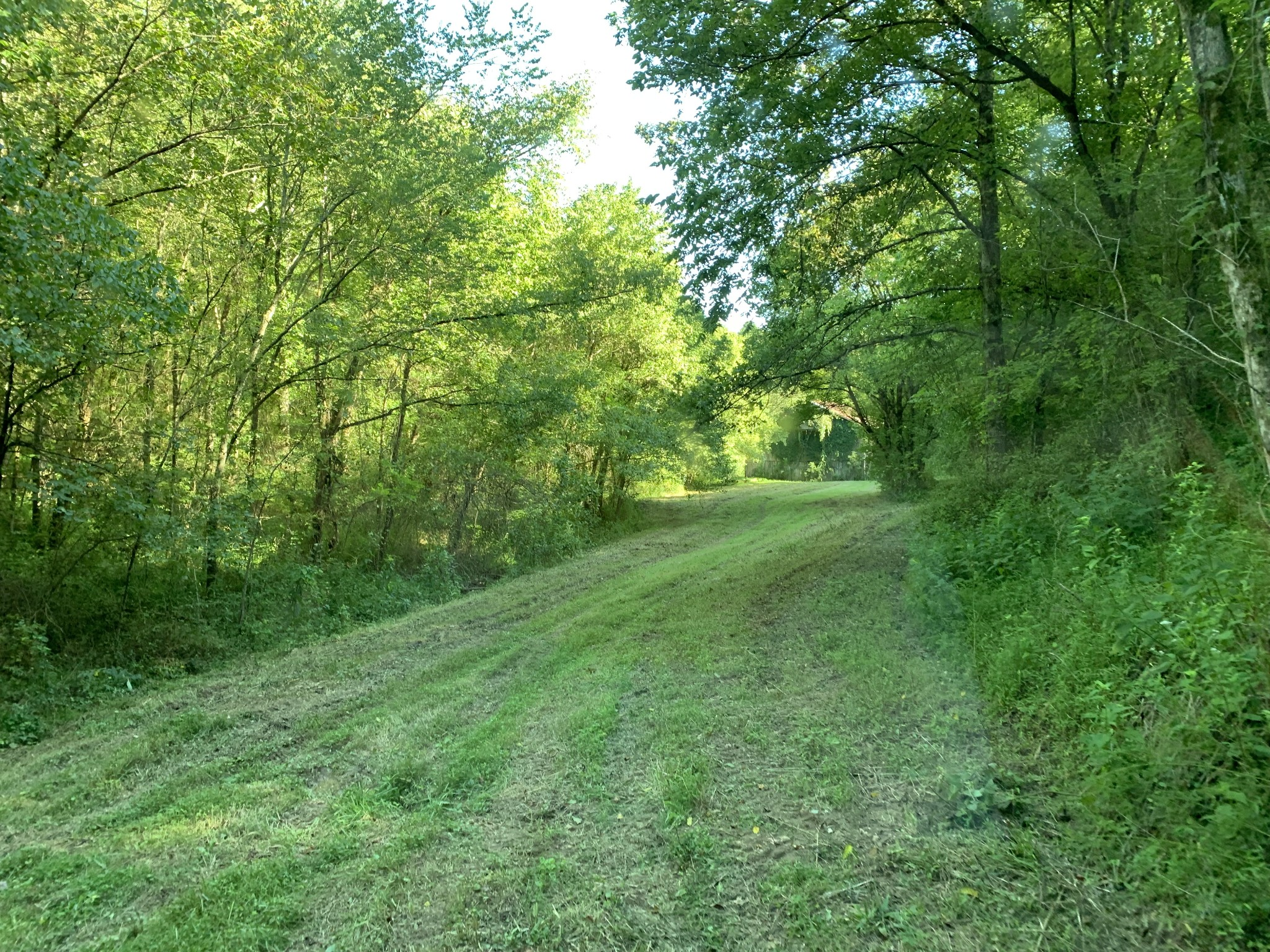 0 Wartrace Hwy Property Photo - Whitleyville, TN real estate listing