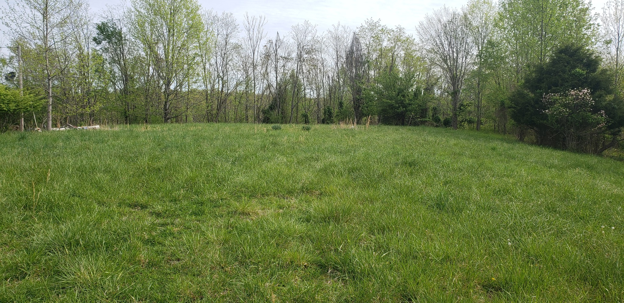 0 Possum Hollow Rd Property Photo - Dowelltown, TN real estate listing