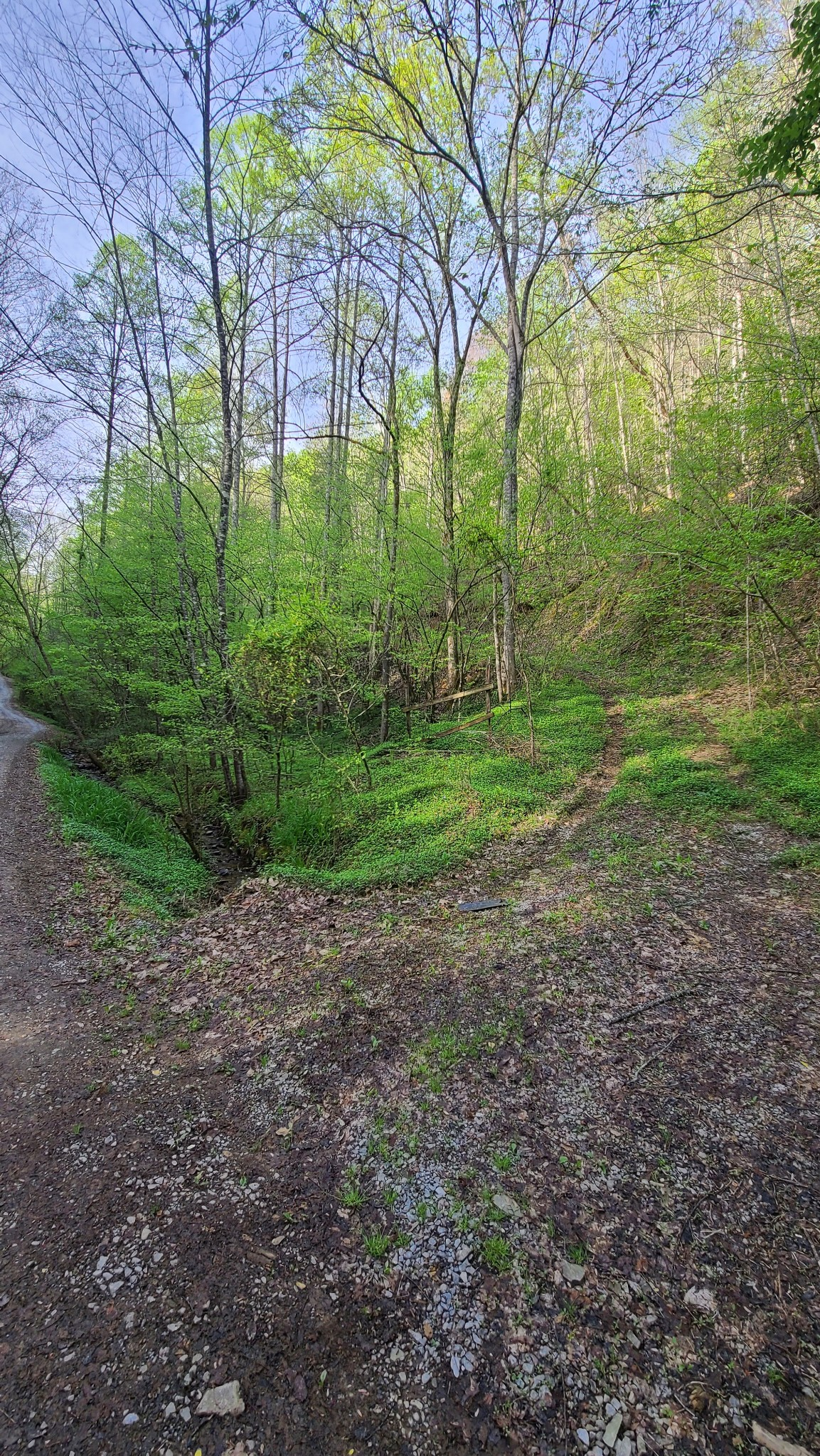 0 Blossom Hollow Way Property Photo - Sevierville, TN real estate listing